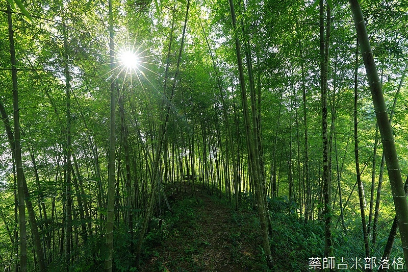 BambooHouse_249.jpg