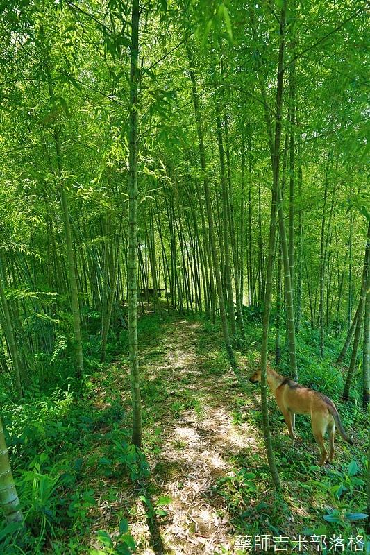 BambooHouse_532.jpg