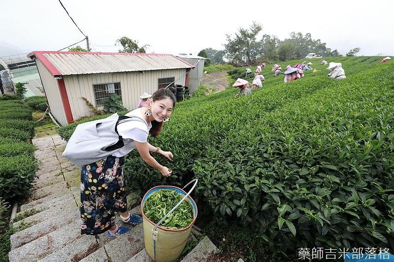 Chiayi_Tea_192.jpg