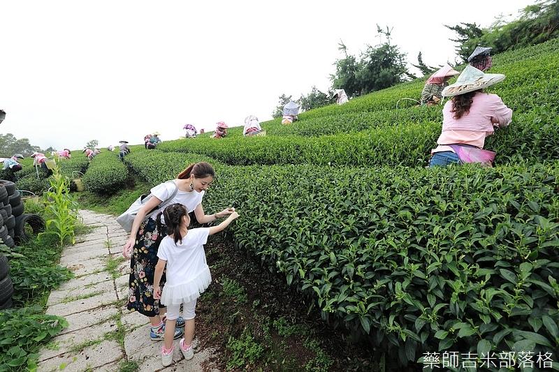 Chiayi_Tea_199.jpg