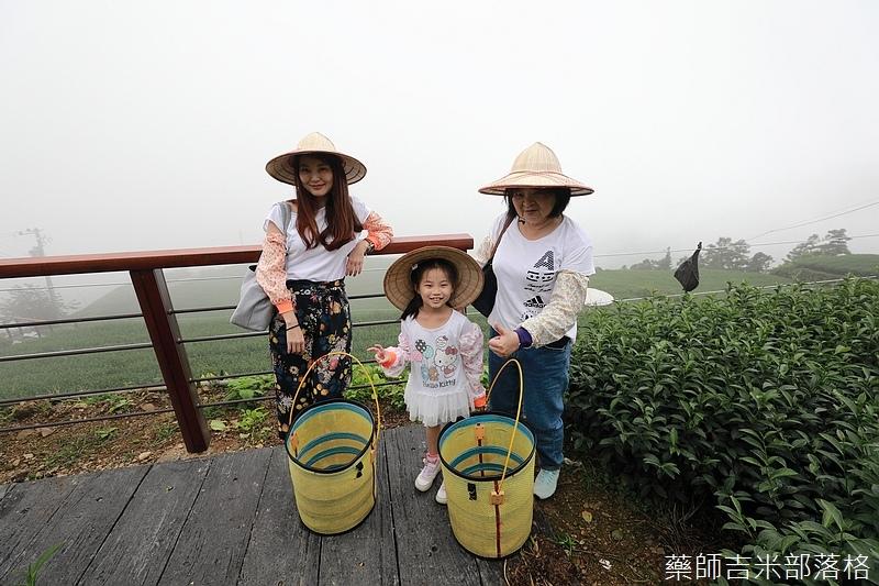 Chiayi_Tea_242.jpg
