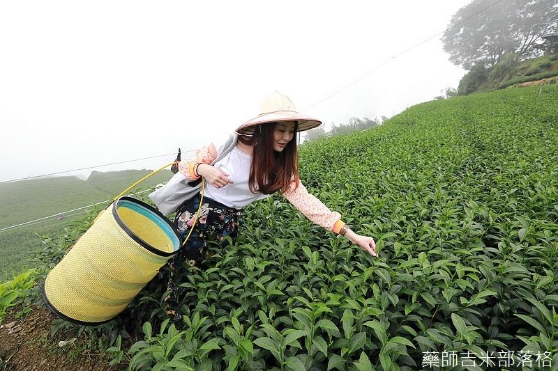 Chiayi_Tea_252.jpg