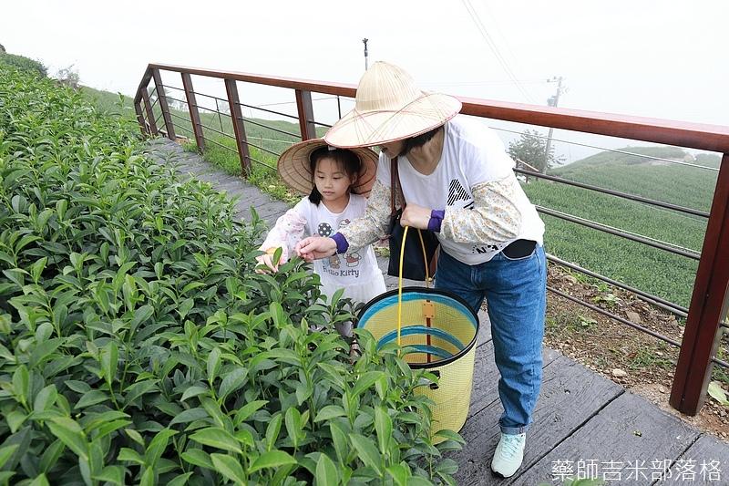 Chiayi_Tea_255.jpg