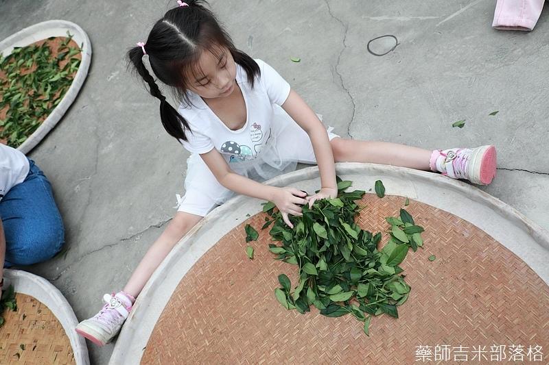 Chiayi_Tea_402.jpg