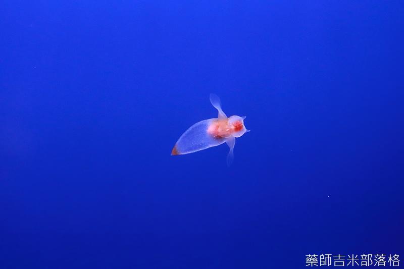 Hokkaido_170906_227.jpg