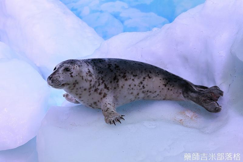Hokkaido_170906_286.jpg