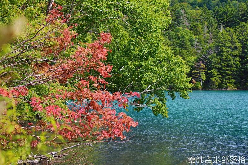 Hokkaido_170908_352.jpg
