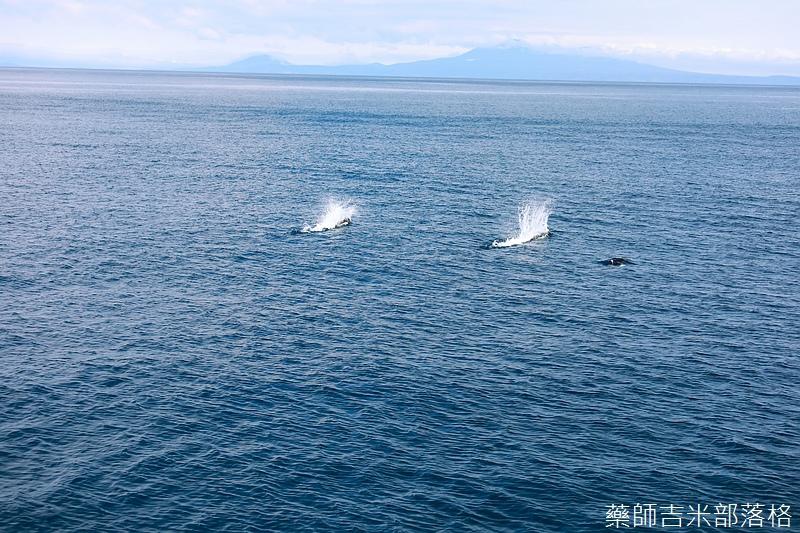 Hokkaido_170907_470.jpg