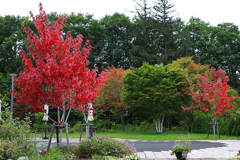 Hokkaido_170908_712.jpg
