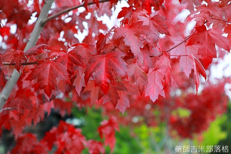 Hokkaido_170908_719.jpg