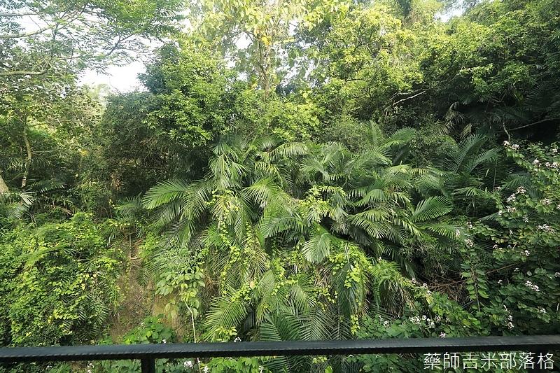 Tainan_1711_1405.jpg