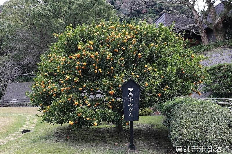 Kyushu_171217_024.jpg