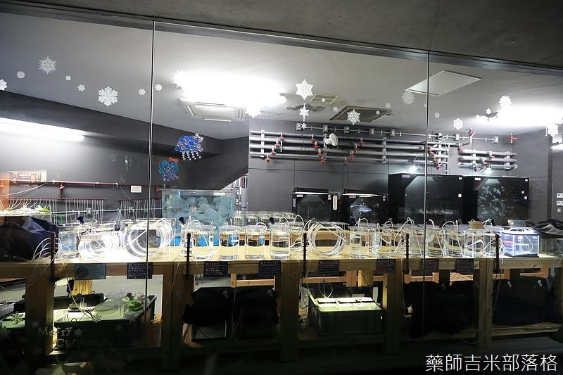 Kyushu_171220_0063.jpg