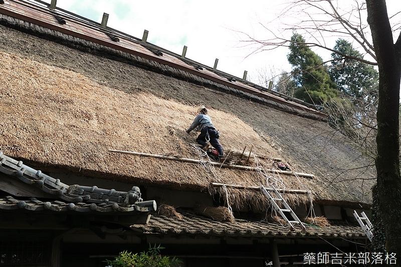 Kyushu_171218_386.jpg