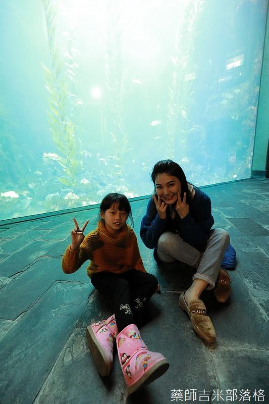 Aquarium_100.jpg