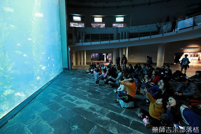 Aquarium_114.jpg
