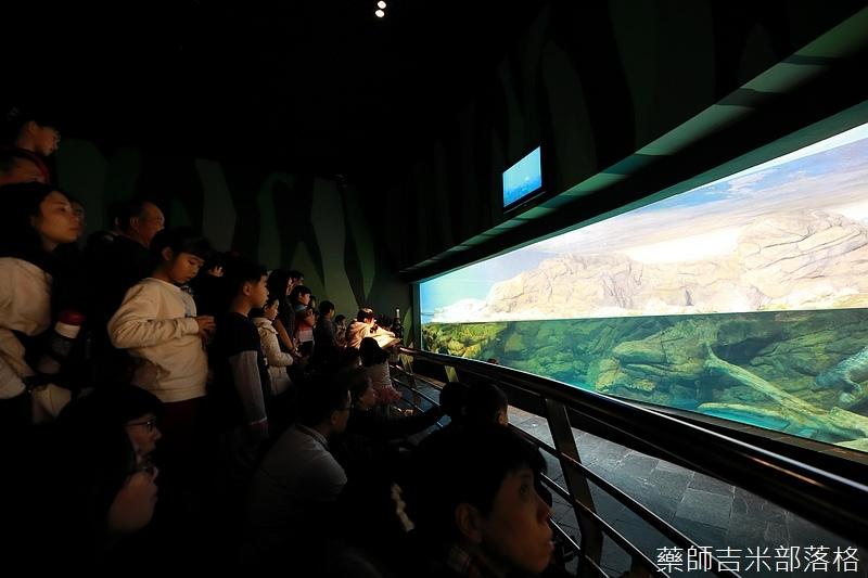 Aquarium_223.jpg