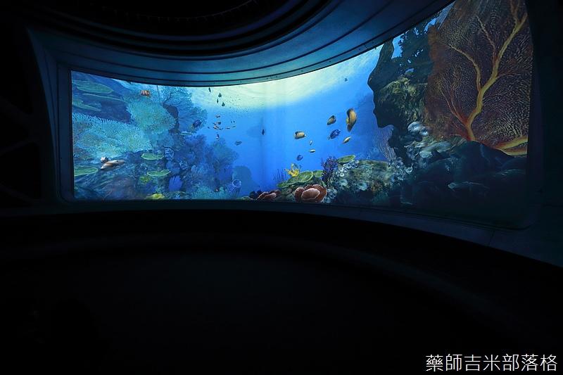 Aquarium_364.jpg