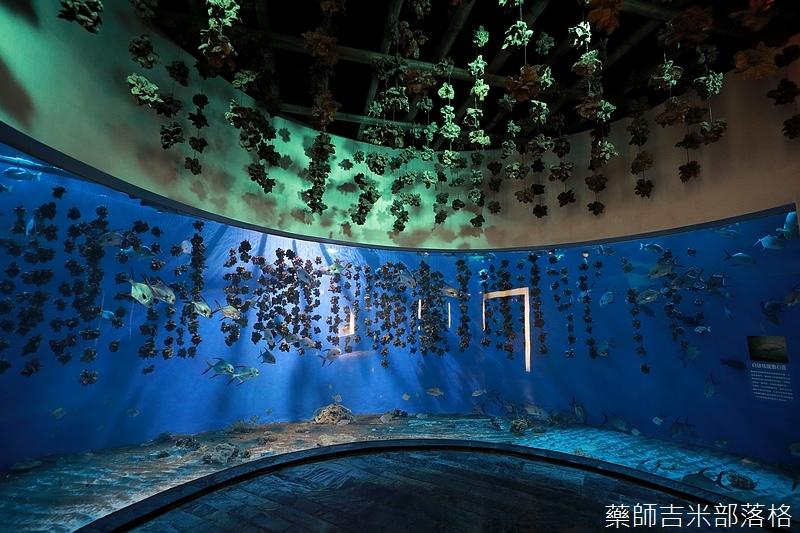 Aquarium_402.jpg