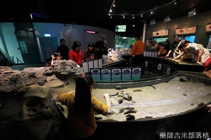 Aquarium_451.jpg