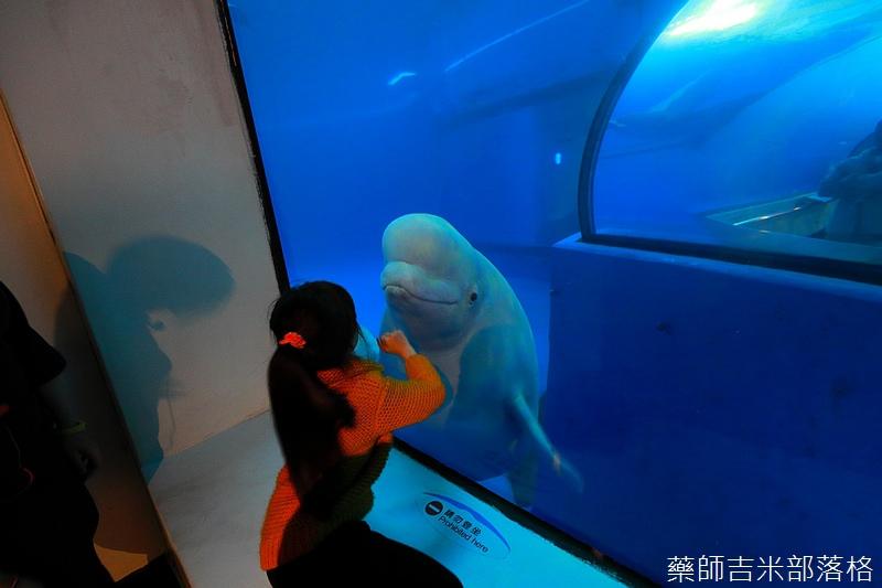 Aquarium_708.jpg