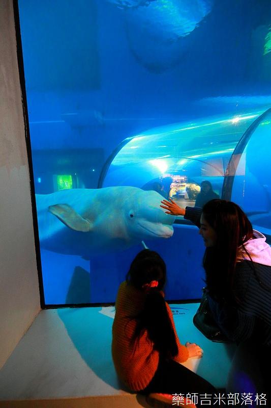Aquarium_727.jpg