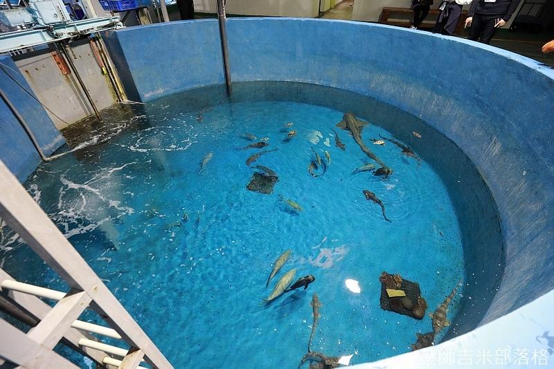 Aquarium_747.jpg