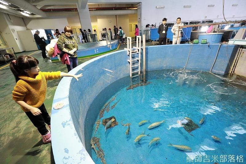 Aquarium_771.jpg