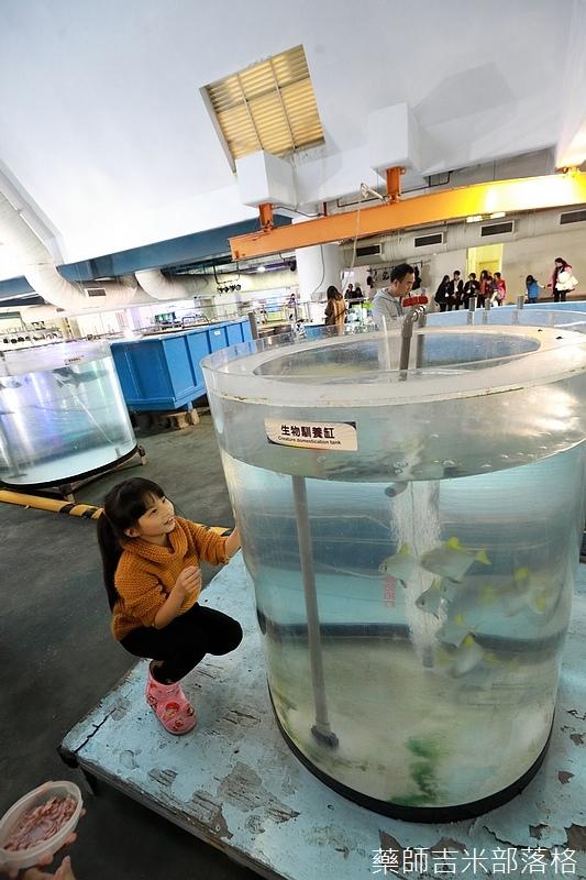 Aquarium_774.jpg