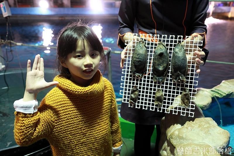 Aquarium_794.jpg