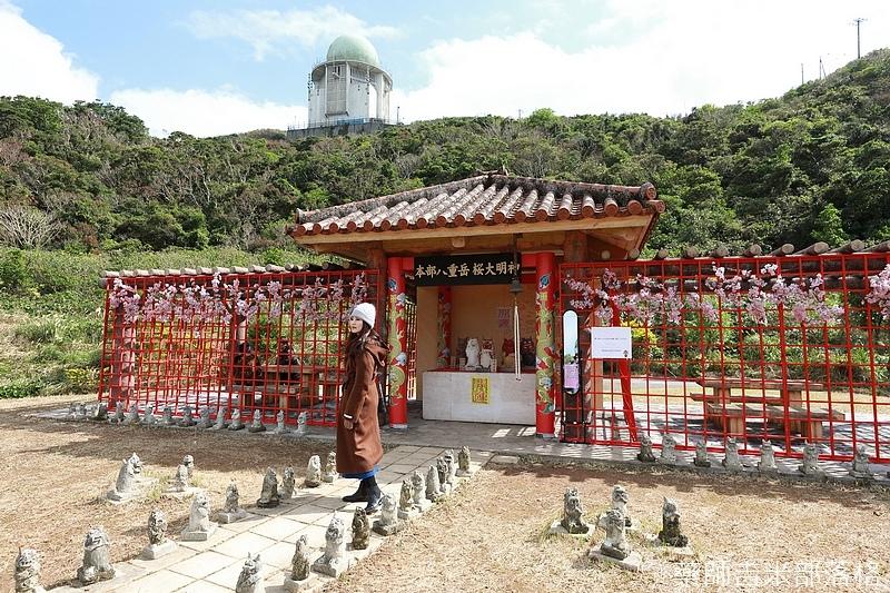 Okinawa_1801_0213.jpg