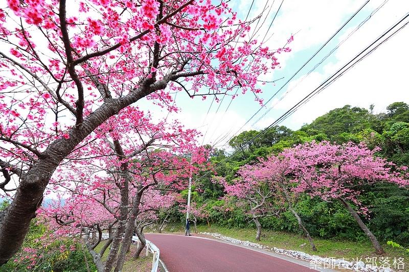 Okinawa_1801_0264.jpg