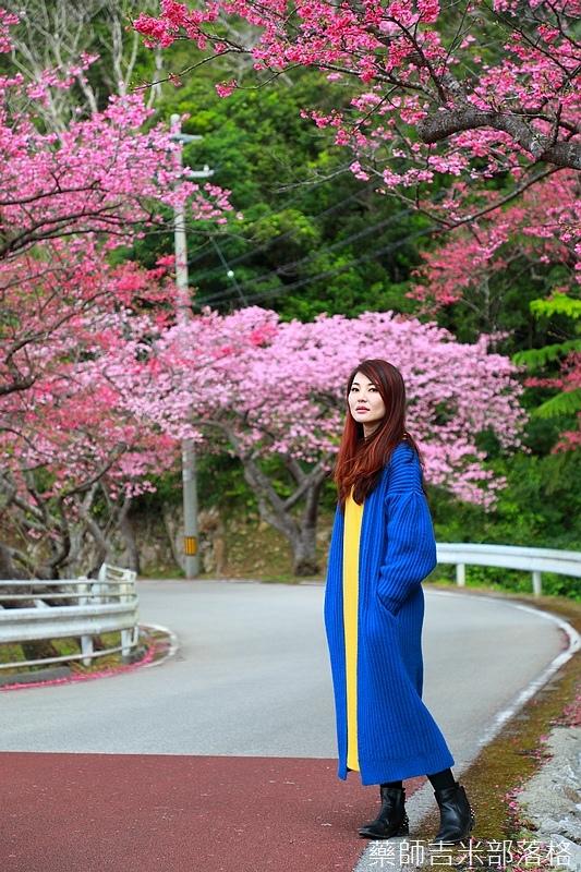 Okinawa_1801_0391.jpg