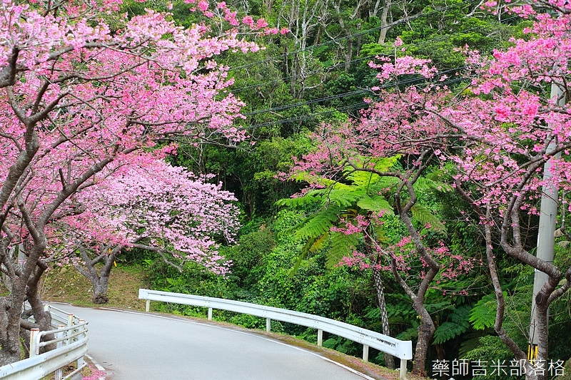 Okinawa_1801_0427.jpg