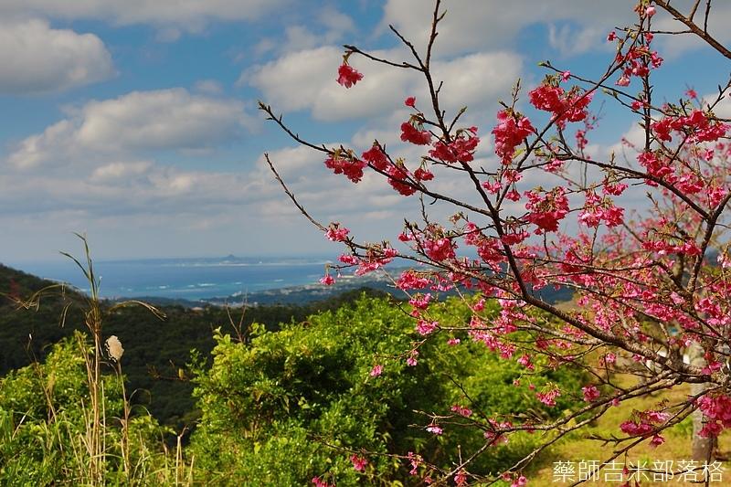 Okinawa_1801_0475.jpg