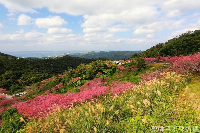 Okinawa_1801_0504.jpg