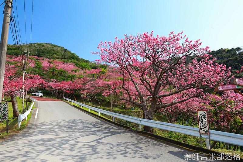 Okinawa_1801_0518.jpg