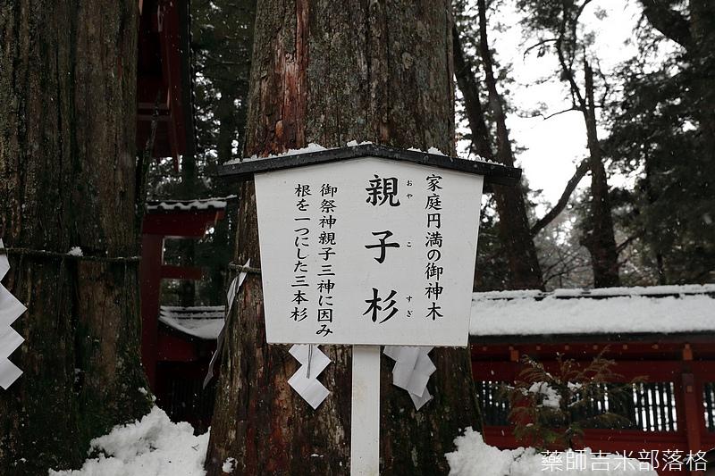 Kanto_180123_697.jpg