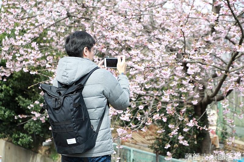 Kanagawa_180306_312.jpg