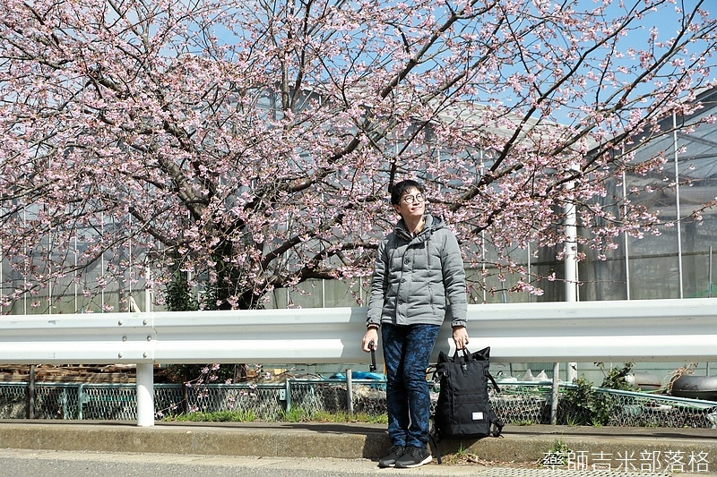 Kanagawa_180306_340.jpg