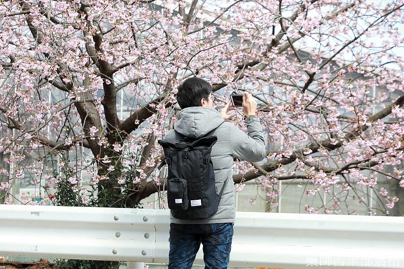 Kanagawa_180306_371.jpg