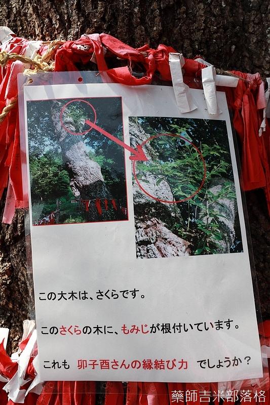 iwate_180315_282.jpg