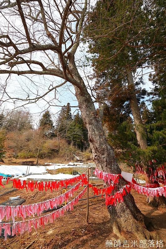 iwate_180315_320.jpg