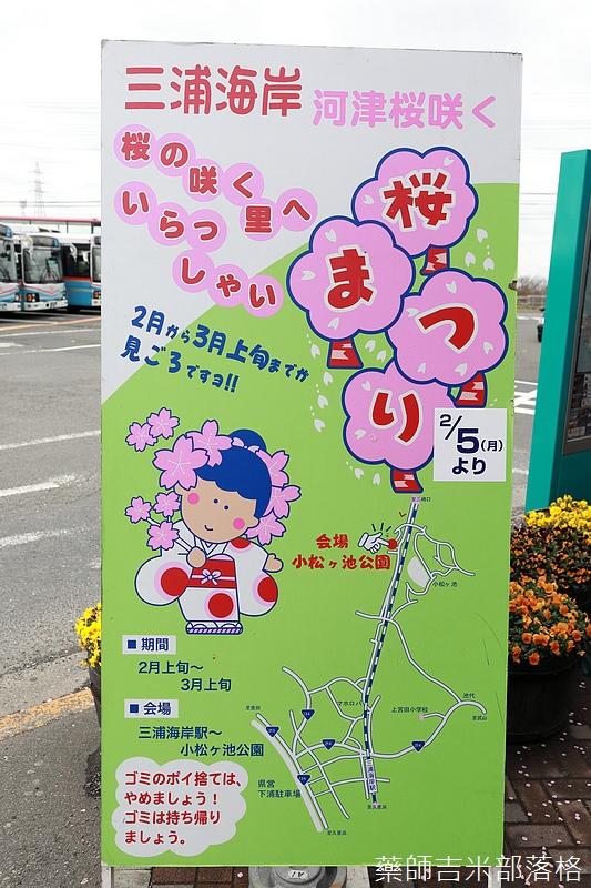 Kanagawa_180306_012.jpg