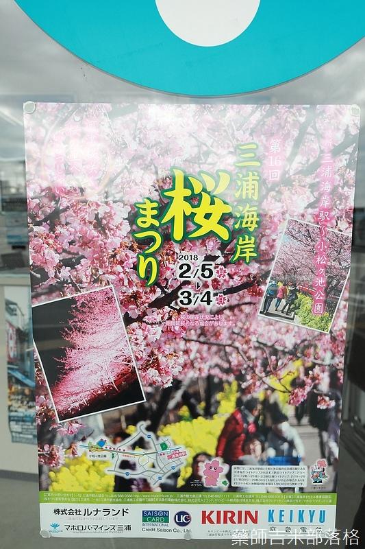 Kanagawa_180306_020.jpg