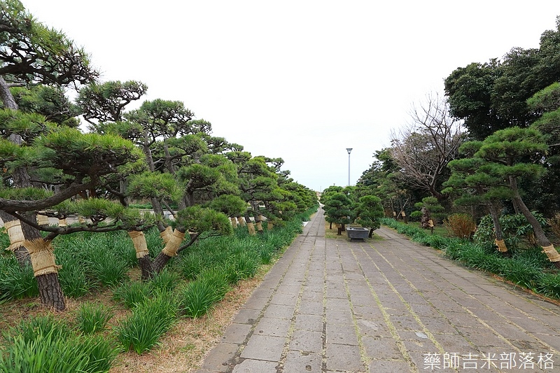 Kanagawa_180307_007.jpg