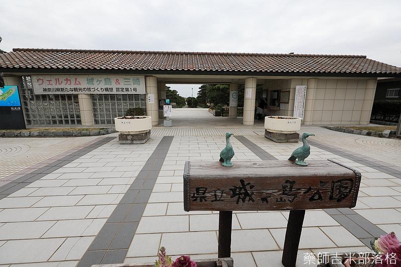 Kanagawa_180307_149.jpg
