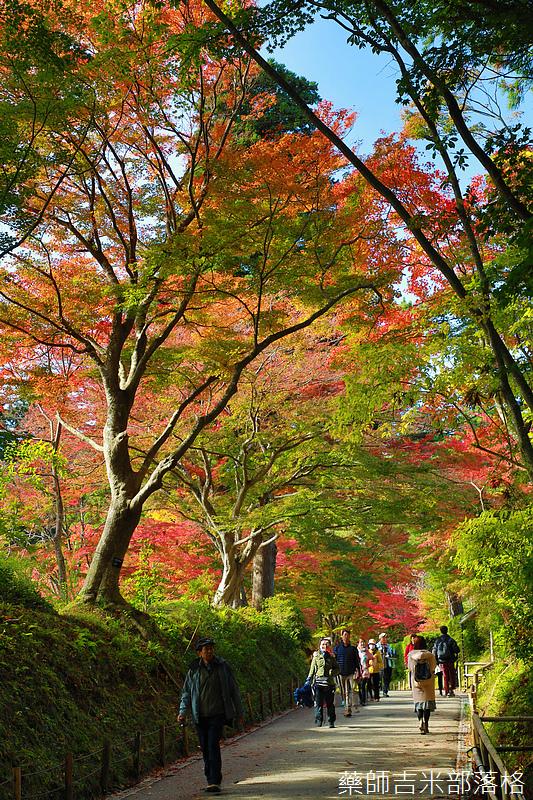 Tohoku_171030_116.jpg