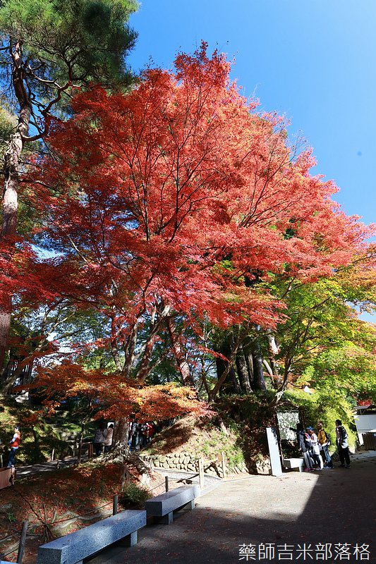 Tohoku_171030_153.jpg