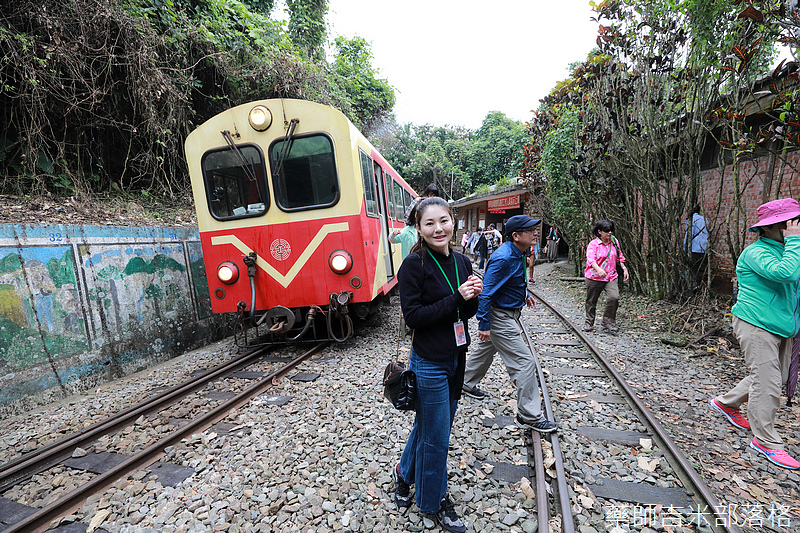 alishan_railway_0195.jpg